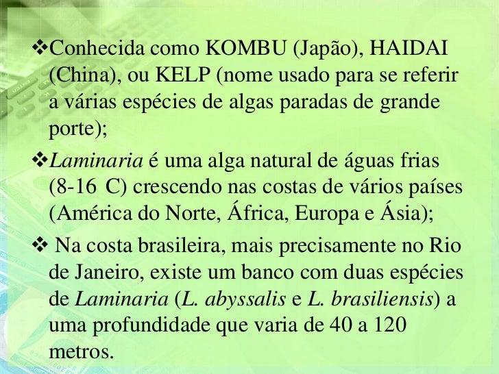 Conhecida como KOMBU (Japão), HAIDAI (China), ou KELP (nome usado para se referir a várias espécies de algas paradas de g...