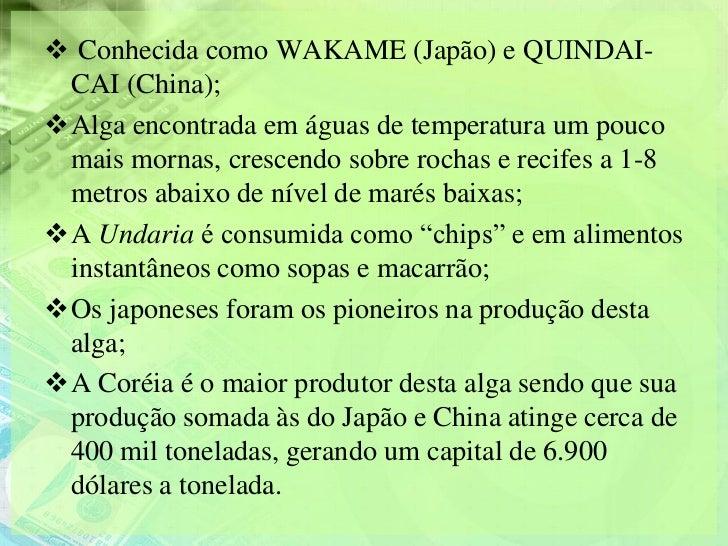  Conhecida como WAKAME (Japão) e QUINDAI- CAI (China);Alga encontrada em águas de temperatura um pouco mais mornas, cres...
