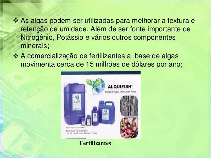  As algas podem ser utilizadas para melhorar a textura e  retenção de umidade. Além de ser fonte importante de  Nitrogêni...