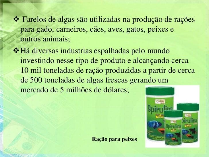  Farelos de algas são utilizadas na produção de rações para gado, carneiros, cães, aves, gatos, peixes e outros animais;...