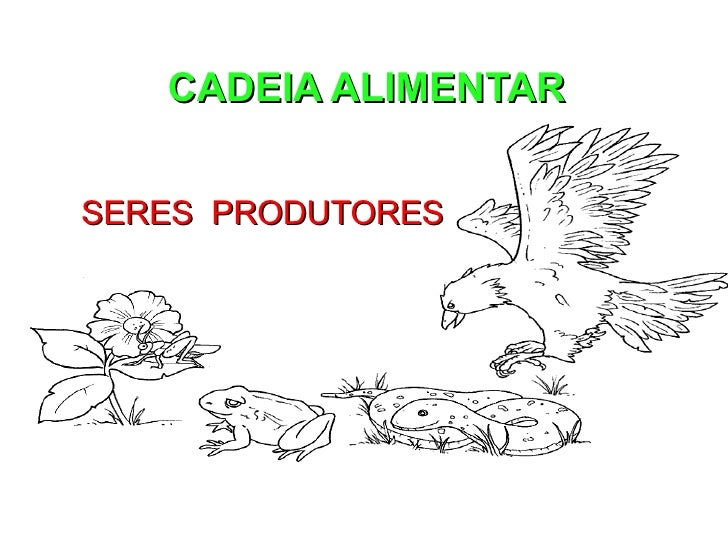 CADEIA ALIMENTAR SERES  PRODUTORES