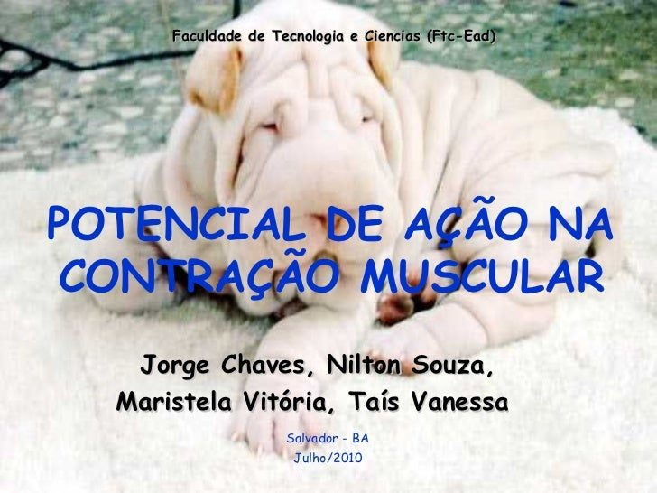 Faculdade de Tecnologia e Ciencias (Ftc-Ead) POTENCIAL DE AÇÃO NA CONTRAÇÃO MUSCULAR Jorge Chaves, Nilton Souza,  Maristel...