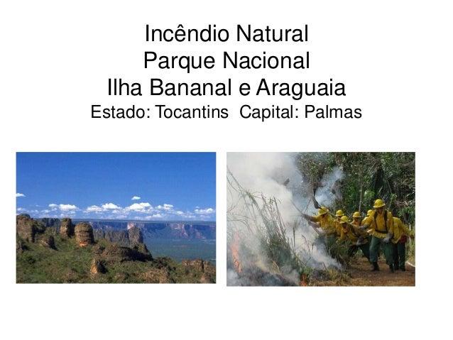 Incêndio Natural Parque Nacional Ilha Bananal e Araguaia Estado: Tocantins Capital: Palmas