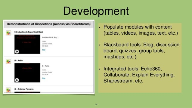 Development • Populate modules with content (tables, videos, images, text, etc.) • Blackboard tools: Blog, discussion boar...