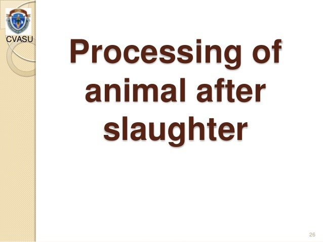 disadvantages of halal slaughter Kuwait institute for scientific research gcc standardization organization the first gulf conference on halal industry  10:00 mechanical slaughter:.
