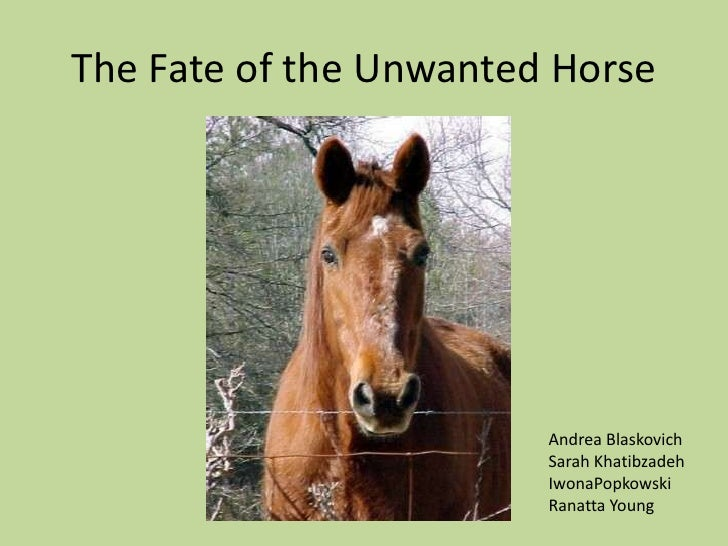 The Fate of the Unwanted Horse<br />Andrea Blaskovich<br />Sarah Khatibzadeh<br />IwonaPopkowski<br />Ranatta Young<br />