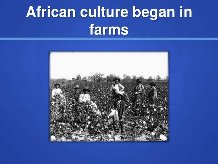 African culture began in         farms