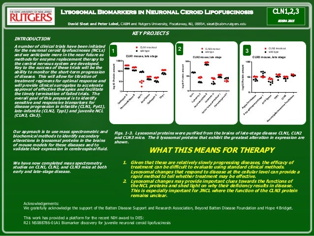 Lysosomal Biomarkers in Neuronal Ceroid Lipofuscinosis David Sleat and Peter Lobel, CABM and Rutgers University, Piscatawa...
