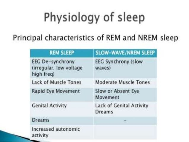 physiology of sleep and its correlation with eeg waves. Black Bedroom Furniture Sets. Home Design Ideas
