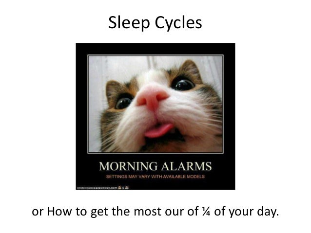 Sleep Cyclesor How to get the most our of ¼ of your day.