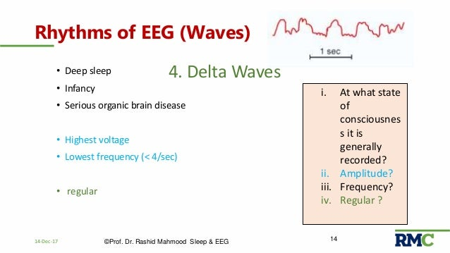 Sleep Physiology & EEG (Electroencephalogram)