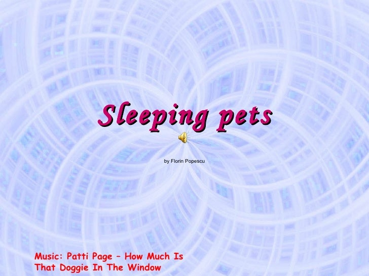 Sleeping pets by Florin Popescu Music: Patti Page – How Much Is That Doggie In The Window