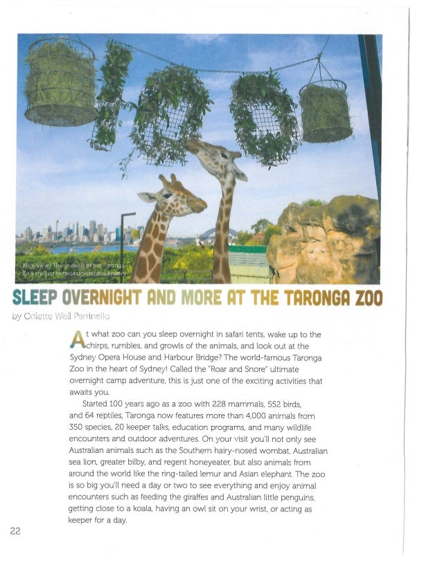 Sleep Overnight and More at the Taronga Zoo by Colette Weil Parrinello FACES magazine April 2017 Cobblestone Publishing