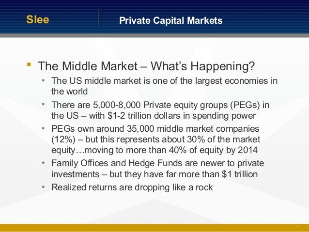 Private capital markets - Middle office private equity ...