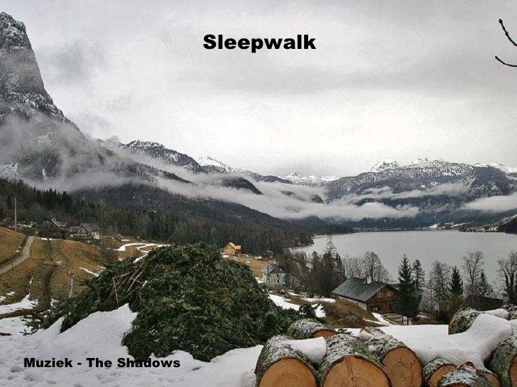 Sleepwalk Muziek - The Shadows
