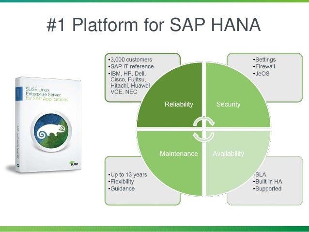 #1 Platform for SAP HANA