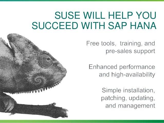 Sles for sap b1
