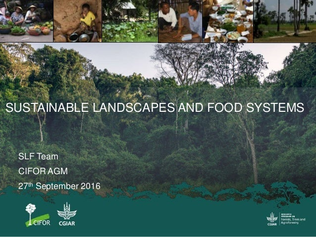 SLF Team CIFOR AGM 27th September 2016 SUSTAINABLE LANDSCAPES AND FOOD SYSTEMS