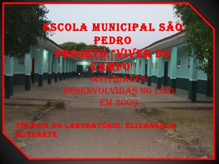 """ESCOLA MUNICIPAL SÃO PEDRO PROJETO """"VIVER DO CAMPO """" ATIVIDADES DESENVOLVIDAS NO LIED EM 2009 TÉCNICA DO LABORATÓRIO: ELIZ..."""