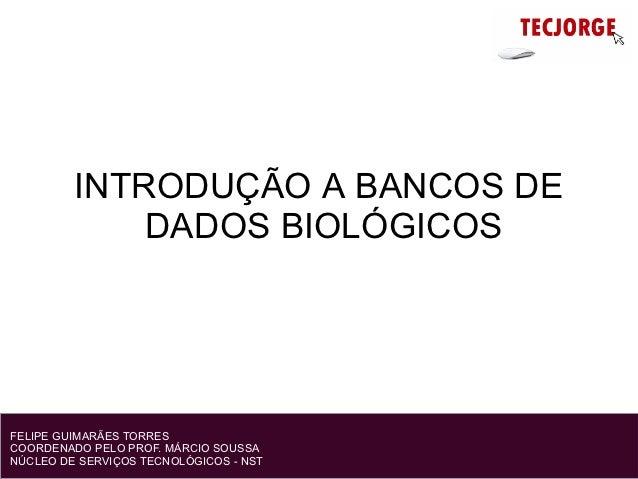 INTRODUÇÃO A BANCOS DE             DADOS BIOLÓGICOSFELIPE GUIMARÃES TORRESCOORDENADO PELO PROF. MÁRCIO SOUSSANÚCLEO DE SER...