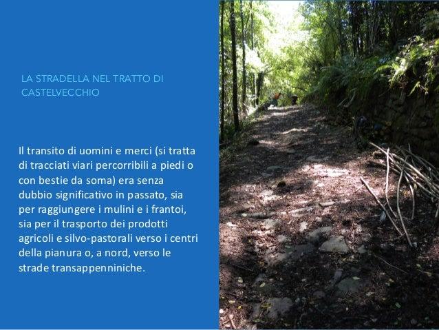 """DOPO LA RIPULITURA Area utilizzata per l'inizativa """"Merenda in Cessana"""""""