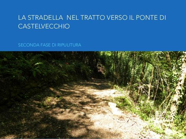 MONTAGGIO SLIDE: SIMONE PAGNINI Foto: Chiara Zucconi Testi: Omero Nardini