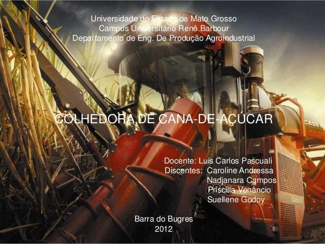 Universidade do Estado de Mato GrossoCampus Universitário Renê BarbourDepartamento de Eng. De Produção AgroindustrialCOLHE...