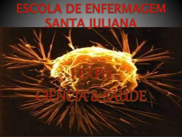  SANDRA  SUELY  CECÍLIA  EVANDSON  FÁTIMA