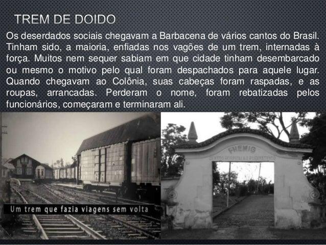Livro Holocausto Brasileiro