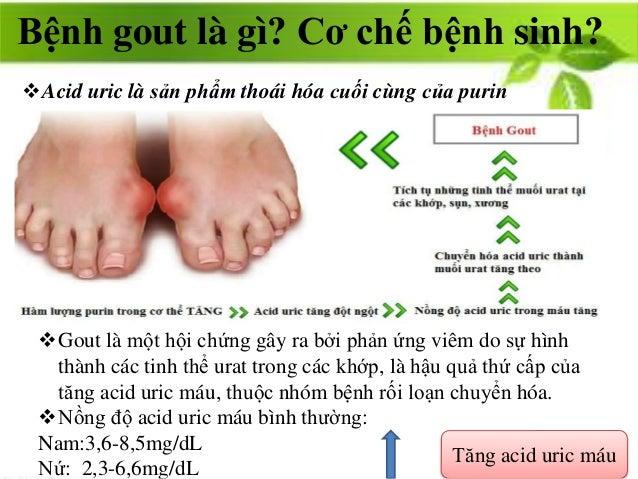 Bệnh gout là gì? Cơ chế bệnh sinh? Acid uric là sản phẩm thoái hóa cuối cùng của purin Gout là một hội chứng gây ra bởi ...