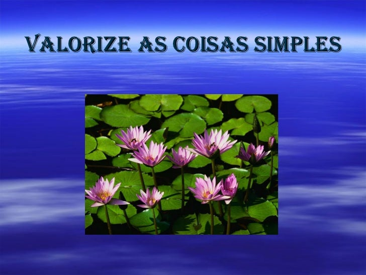 Valorize   as coisas simples