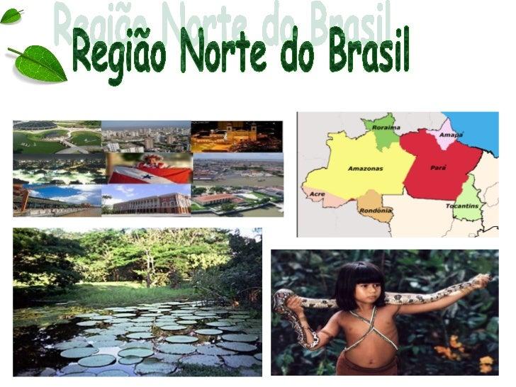 • Região mais extensa do país;• Clima equatorial;• Região pouco povoada;• Menor IDH (Índice de  Desenvolvimento Humano) do...