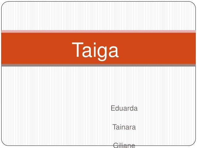 Taiga Eduarda Tainara