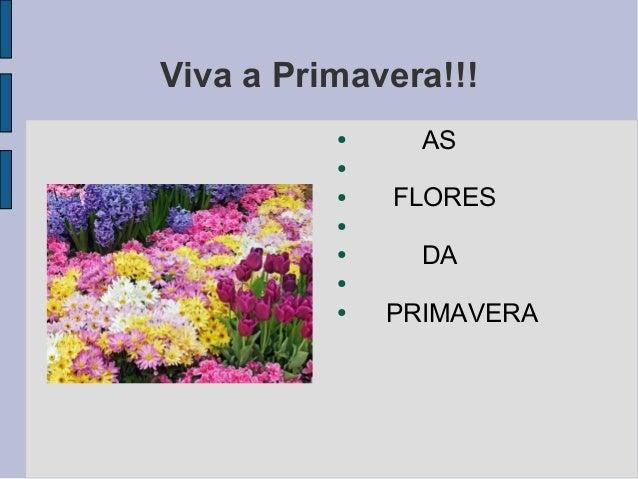 Viva a Primavera!!! ● AS ● ● FLORES ● ● DA ● ● PRIMAVERA