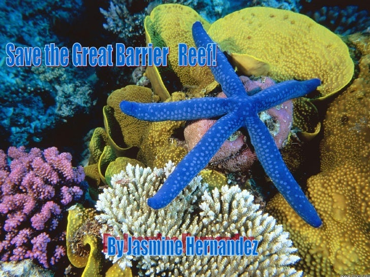 Great Barrier reef Location           and cLimate   The Great Barrier Reef is part of    the Pacific ocean and is located...