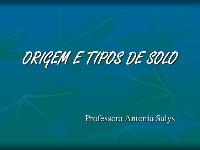 ORIGEM E TIPOS DE SOLO Professora Antonia Salys