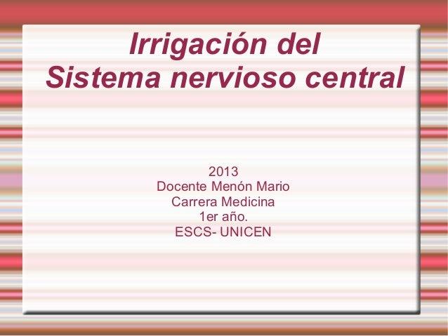 Irrigación del Sistema nervioso central 2013 Docente Menón Mario Carrera Medicina 1er año. ESCS- UNICEN