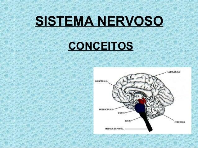 CONCEITOSSISTEMA NERVOSO