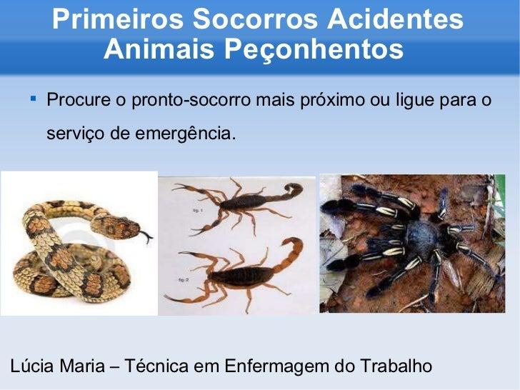 Primeiros Socorros Acidentes Animais Peçonhentos  <ul><li>Procure o pronto-socorro mais próximo ou ligue para o serviço de...