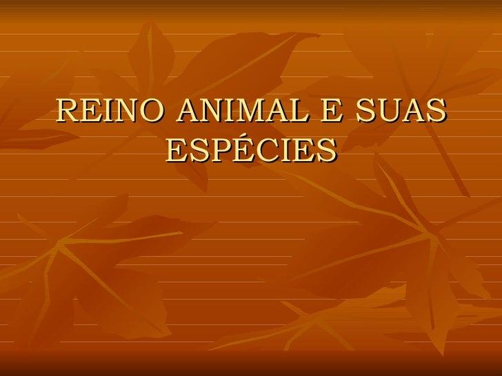 REINO ANIMAL E SUAS ESPÉCIES