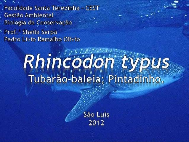 •Mundial (IUCN, 2007): VU •Brasil (Biodiversitas, 2002): VU – Blab(i)