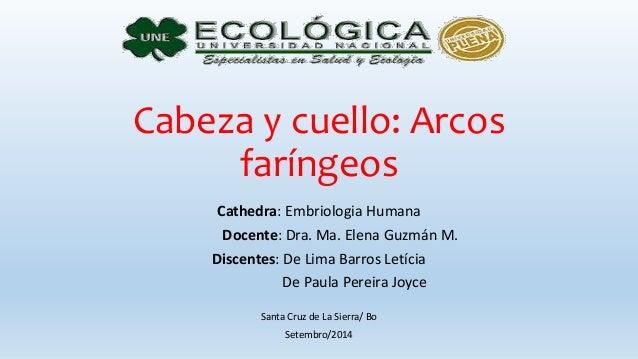 Cabeza y cuello: Arcos faríngeos Cathedra: Embriologia Humana Docente: Dra. Ma. Elena Guzmán M. Discentes: De Lima Barros ...