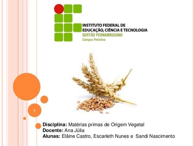 1 Disciplina: Matérias primas de Origem Vegetal Docente: Ana Júlia Alunas: Elâine Castro, Escarleth Nunes e Sandi Nascimen...