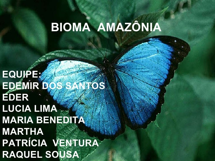 BIOMA  AMAZÔNIA EQUIPE: EDEMIR DOS SANTOS EDER LUCIA LIMA MARIA BENEDITA MARTHA PATRÍCIA  VENTURA RAQUEL SOUSA