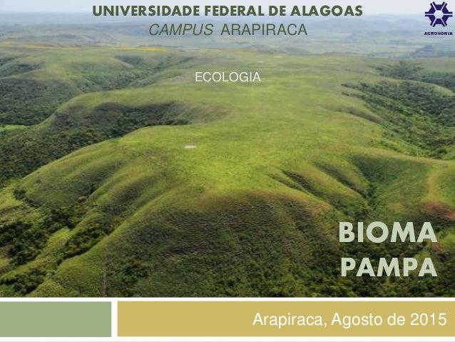 Dominios morfoclimaticos do brasil  araucárias e pradarias e faixas de transição pantanal e mata dos cocais 9