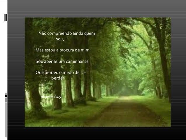 Augusto Cury Slide 2