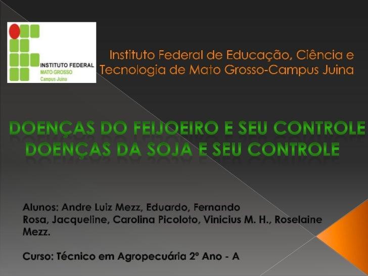 Instituto Federal de Educação, Ciência e Tecnologia de Mato Grosso-Campus Juina<br />DOENÇAS DO FEIJOEIRO E SEU CONTROLE<b...