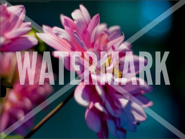 http://www.flickr.com/photos/nosha/3115025977/sizes/o/in/photostream/                    WATERMARK