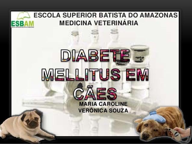 ESCOLA SUPERIOR BATISTA DO AMAZONAS MEDICINA VETERINÁRIA MARIA CAROLINE VERÔNICA SOUZA