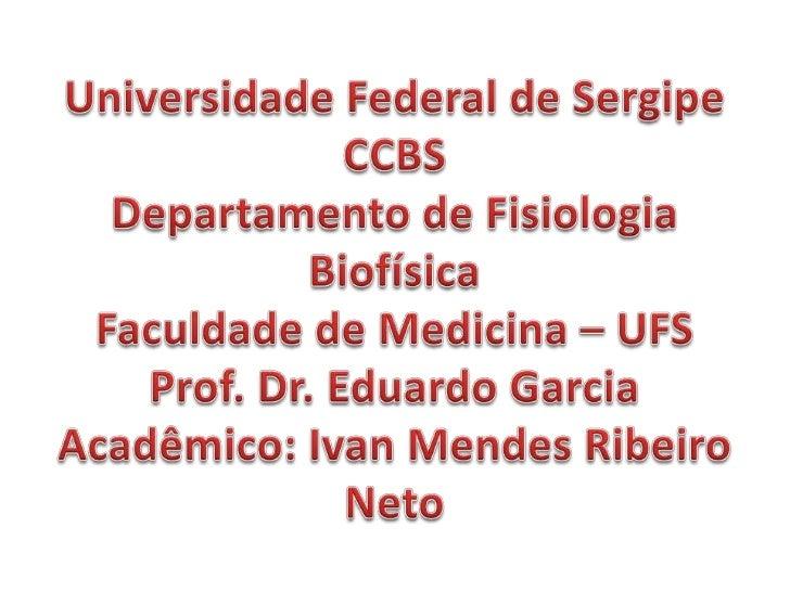 Ivan Mendes Ribeiro  Mayne B. Fontes